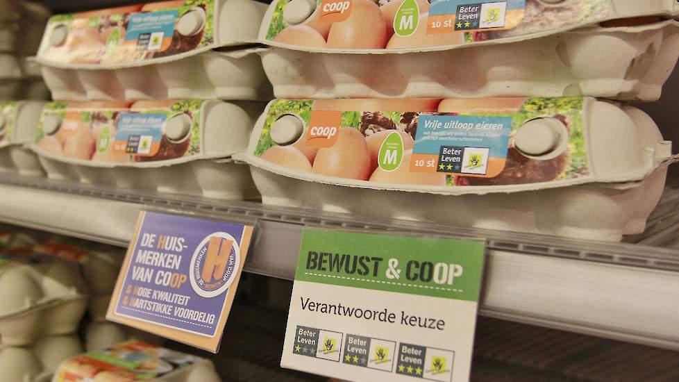 Supermarkt Eier Ausbrüten